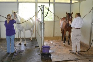 Clipping Class 3